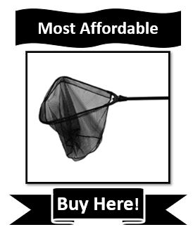 Most Affordable Frabill Fishing Net for Walleye - Frabill Tangle-Free Folding Net