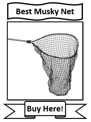 The Best Frabill Musky Fishing Net Reviewed